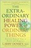 Larry Dossey, Healing Power Book