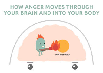 How Anger Affects Your Brain and Body [Infographic – Part 1]
