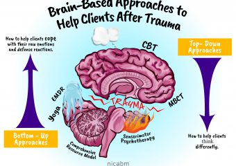 Brain-Based Approaches to Help Clients After Trauma [Infographic]