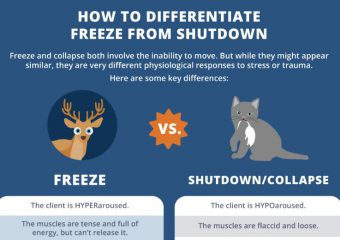 [Infographic] How to Differentiate Between the Freeze and Shutdown Trauma Responses