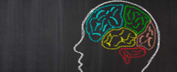 brain with autism chalk drawing