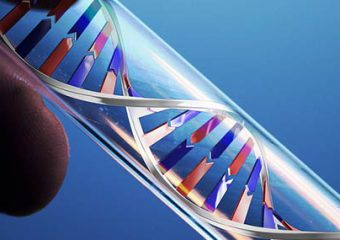 PTSD and Genes