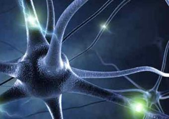 Could Neurogenesis Change Our Treatment of Addiction?